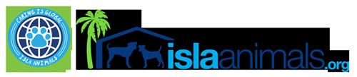 Isla Animals Isla Mujeres Mexico